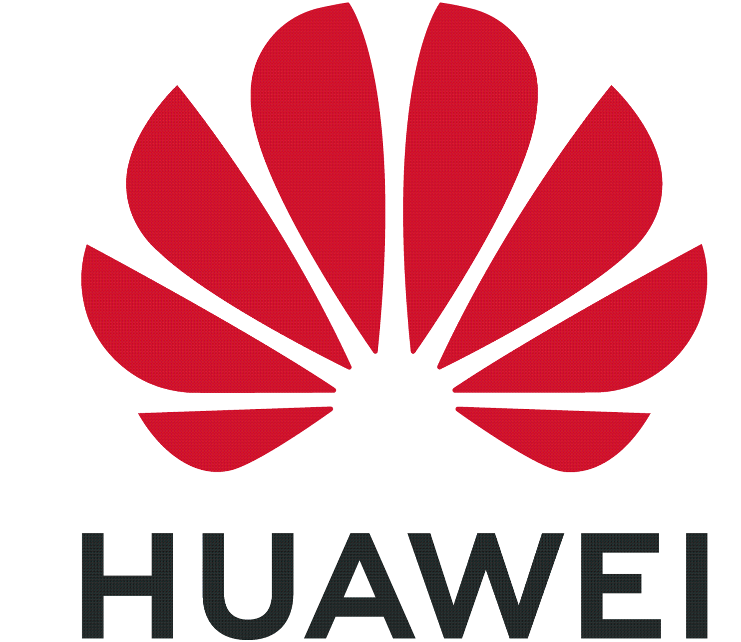 Ana Lorena assume coordenação estratégica da área de marketing e retalho da Huawei Consumer Business 1